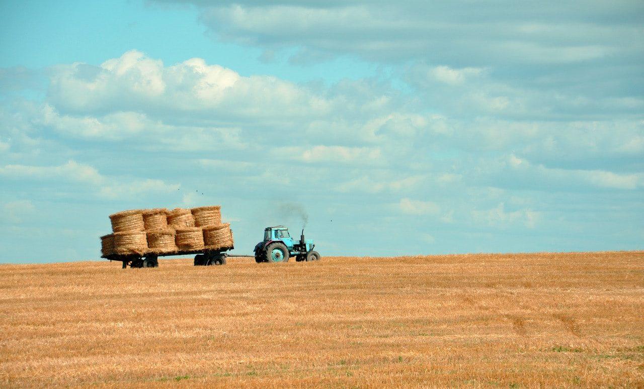 Sel nädalavahetusel toimub juba viies avatud talude päev